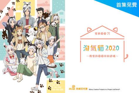淘氣貓2020