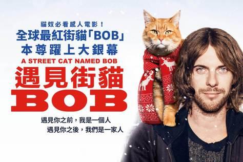 遇見街貓Bob-預告
