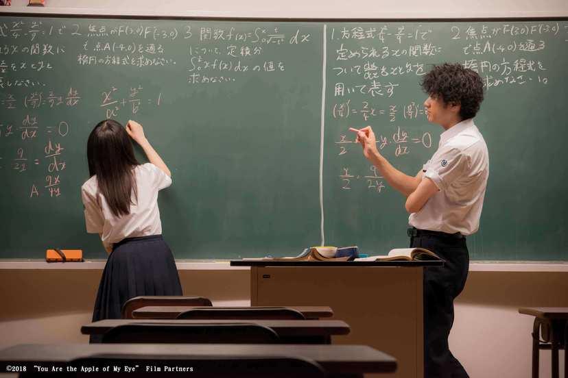 那些年,我們一起追的女孩(日本)