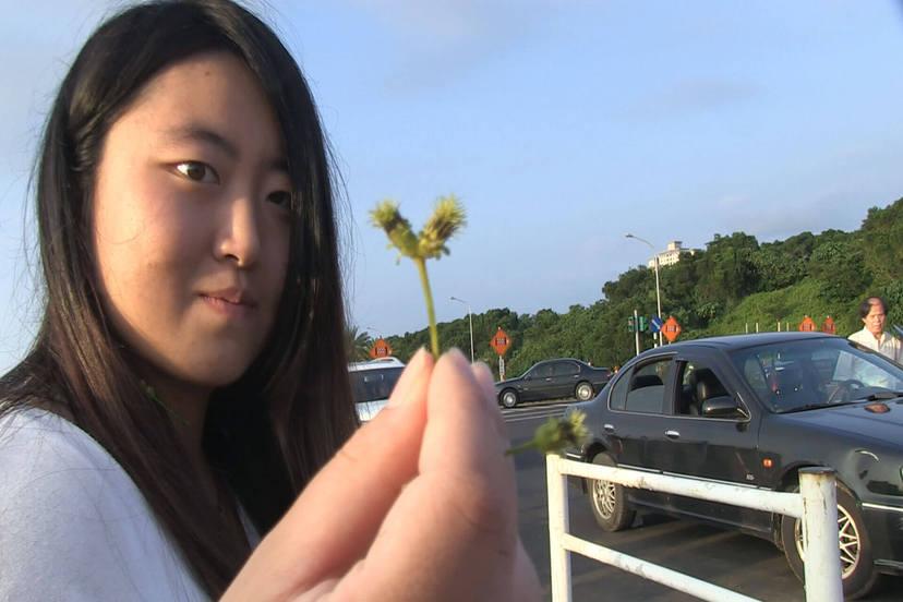 我們的青春,在台灣