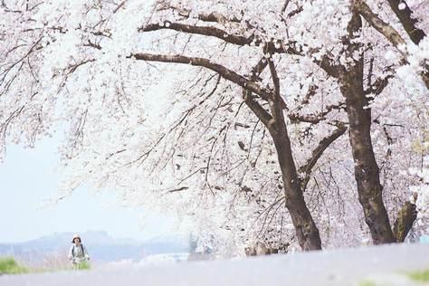 小森食光-冬春篇-預告