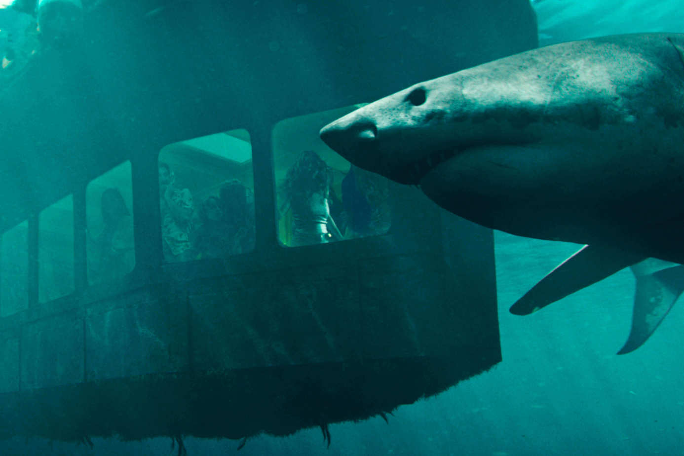 絕鯊47:猛鯊出籠