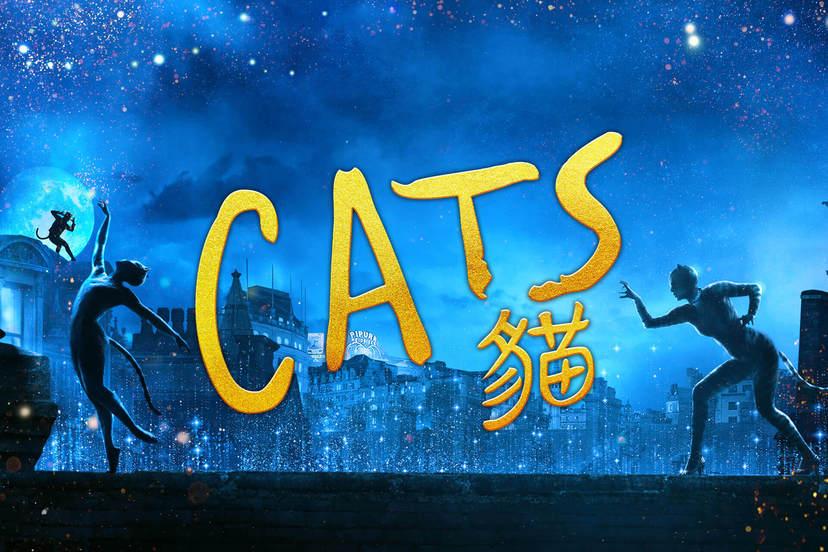 CATS貓