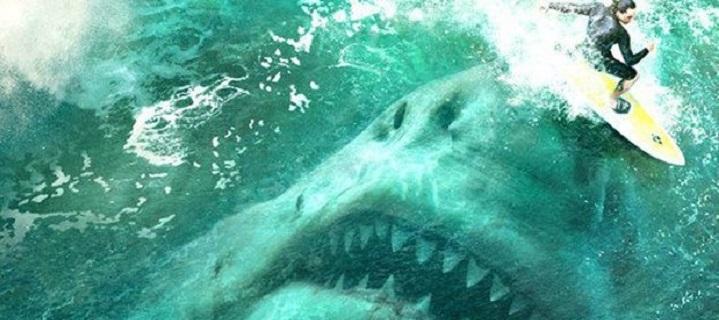 這隻鯊魚和你想的不一樣